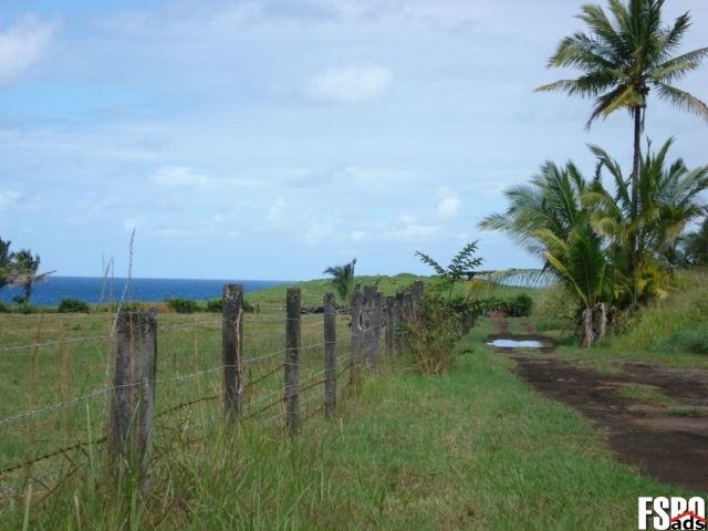 Keeau Land For Sale Acreage Lots Property For Sale By