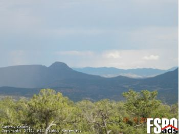 Acreage/Land for Sale in Pie Town, NM 87827