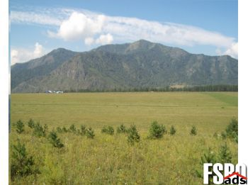 Land for Sale by Owner in Blanchard, Idaho, 83804