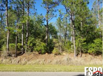 Acreage/Land for Sale in Bay Minette, AL 36507