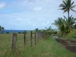 Acreage/Land for Sale in Keeau, HI 96749